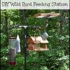 wild bird feeding station with platform feeder