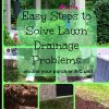 collage showing resolution of lawn drainage problem