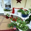 patriotic floral arrays on front porch