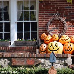 Autumn and Halloween Photograph Fest