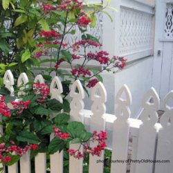 picket fence dog ear design surrounded by flowers