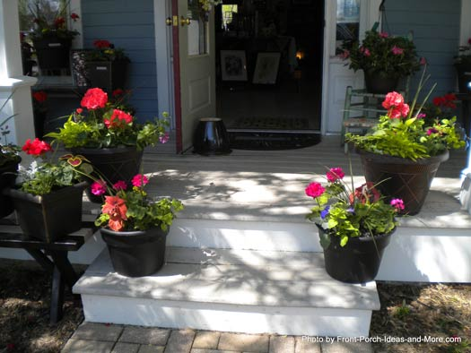 Front Porch Steps with Pretty Plants