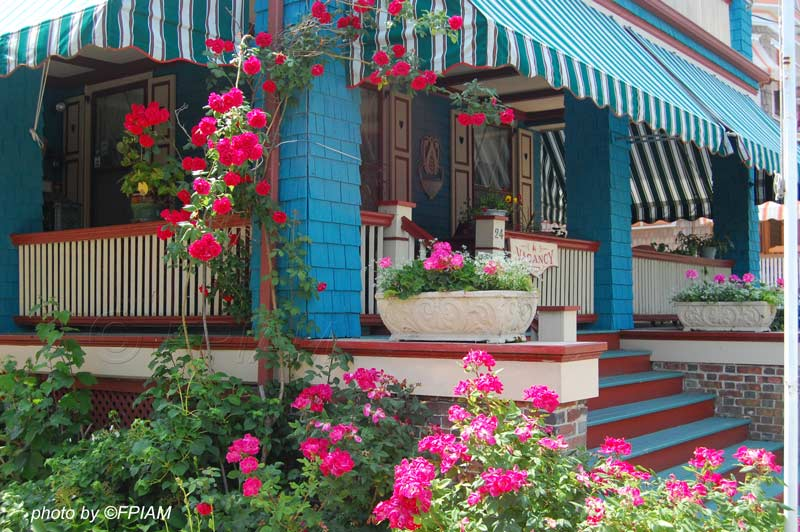 blue front porch with red climbing roses