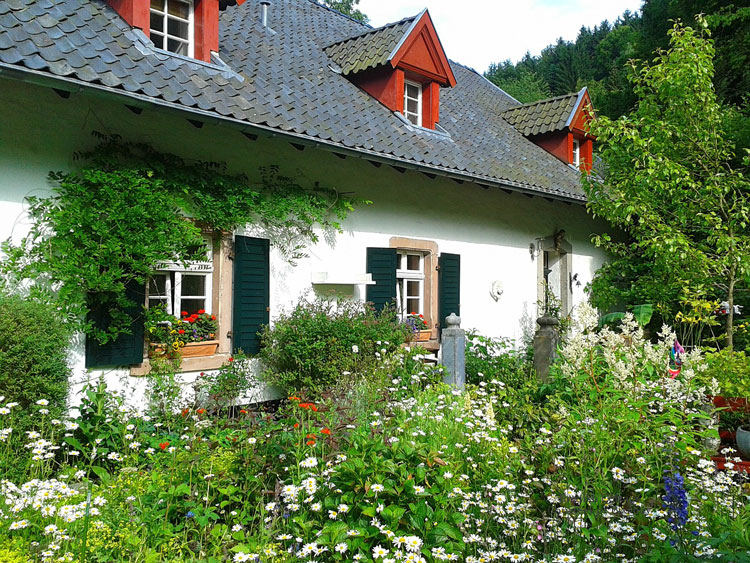 traditonal English cottage with colorful cottage garden