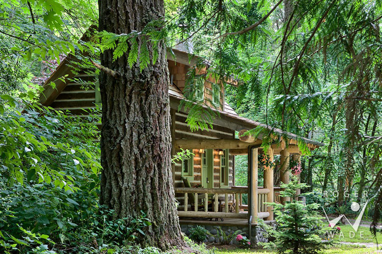 Beautiful Log Home Design