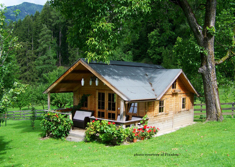beautiful tiny house with front porch in woods