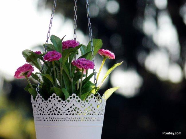 Purple flowers in lovely cut-out-work metal basket