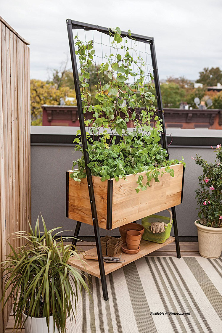 Self-Watering Apex Trellis Planter from amazon.com