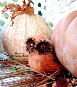 autumn craft ideas - pumpkin with decorations