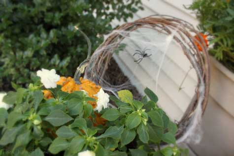 flower pot with spider decoration