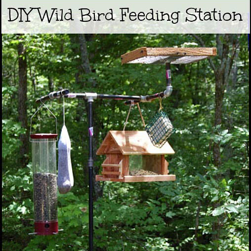 wild bird feeding station with platform feeder