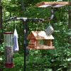 diy wild bird feeding station with platform feeder