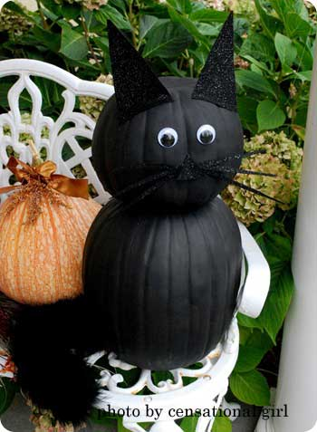pumpkins painted black and adorned as a cat