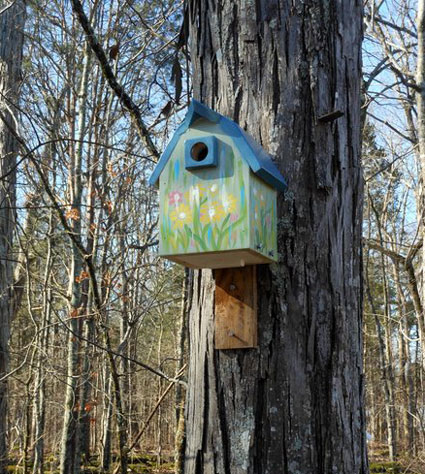 bluebird house on tree