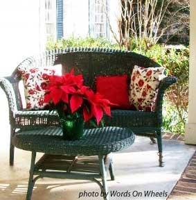 Christmas poinsettias on table
