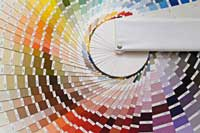photo of a color wheel