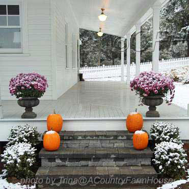 front porch in winter with snow