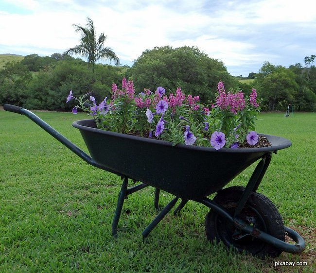 wheel barrow with flowers makes for a nice decoration for a porch