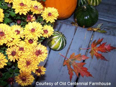 Leaves, pumpkins, and mums on front porch