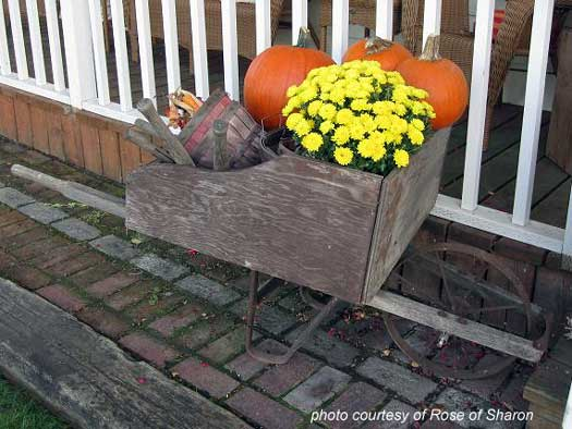 an autumn wheelbarrow display