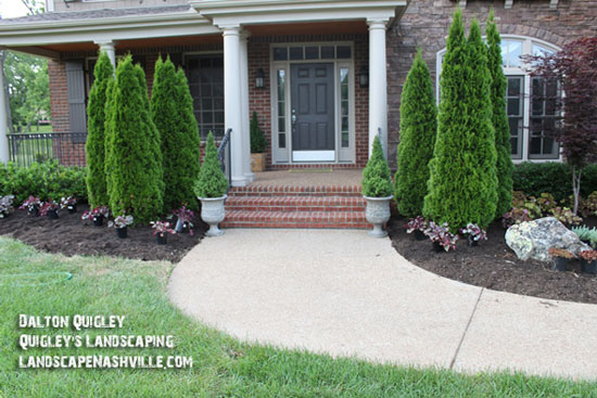 Evergreens in front of front porch on brick home