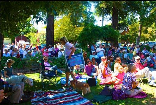 Napa porchfest crowd enjoying the festivities
