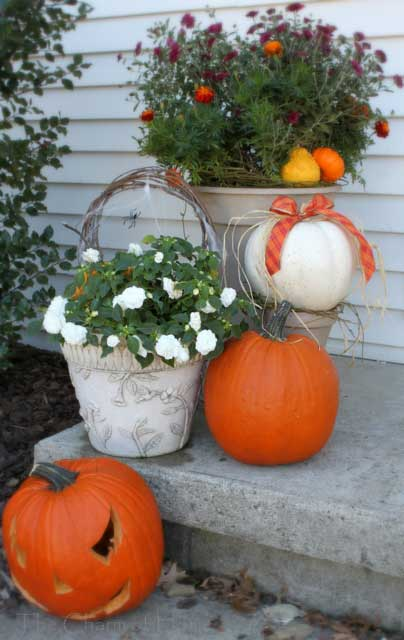 white and orange pumkins and planters