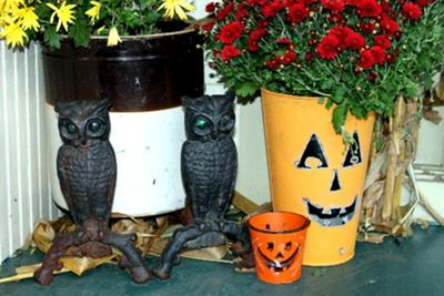 owls and colorful planters