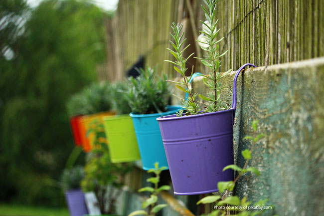 small metal bucket plant pots on fence