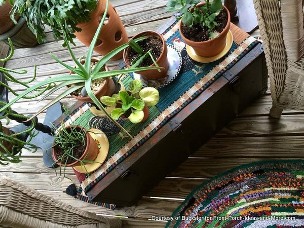 Dawn used an old army trunk on her porch for a plant stand / coffee table