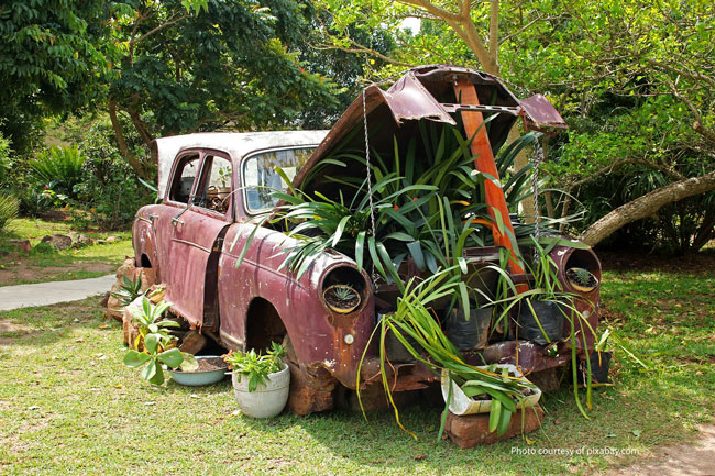 old car filled with plants in garden