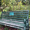picturesque garden bench