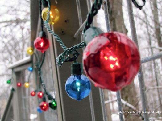Outdoor Christmas lights adorn home
