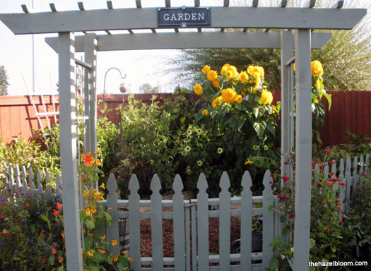 arbor for garden made with picket fence design