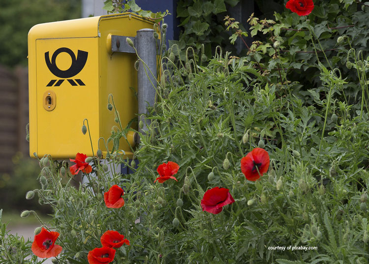 yellow mailbox in midst of red flowers