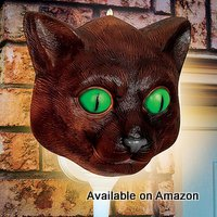 porch cat light cover for Halloween from Amazon