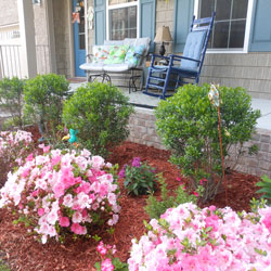 beautiful landscaping in front of front porch