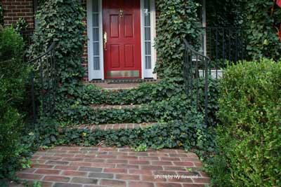 Front porch steps - landscaped