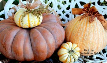 gourd display as pumpkin decorating ideas