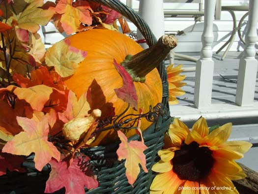 autumn decoration of large pumpkin and leaves in basket