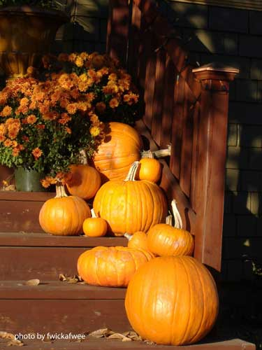 pumpkins lining porch steps