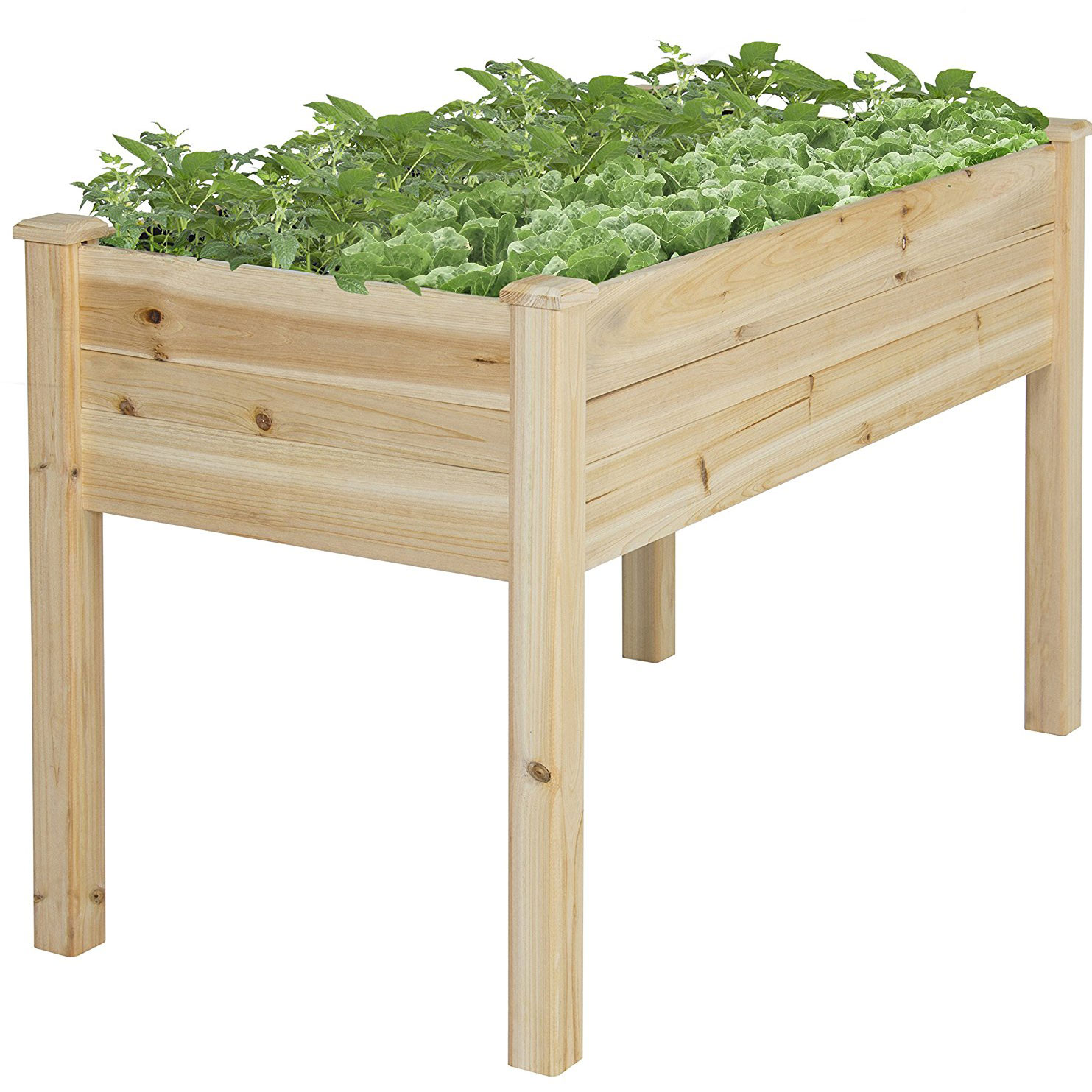 Raised Bed Gardening kit from amazon.com