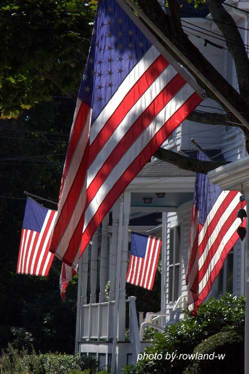 Veteran's Day Flags On Porches