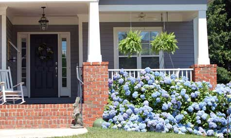 Small front porch with gorgeous hydrangea plants in bloom