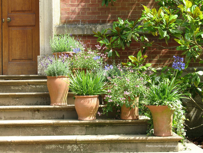 terra cotta garden plant pots on porch steps