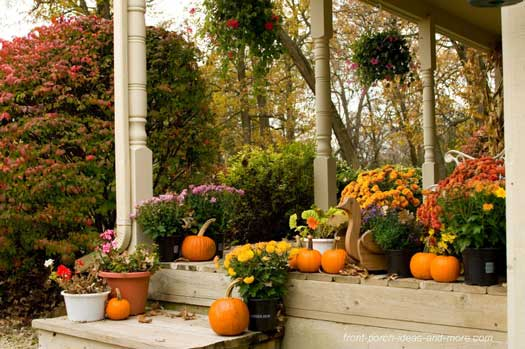 Outdoor Thanksgiving Decorations Colorful Mums Wooden Turkey And Pumpkins On Porch Steps