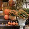 Thanksgiving decorations and ideas