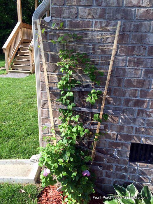 stick and twine plant pot trellis