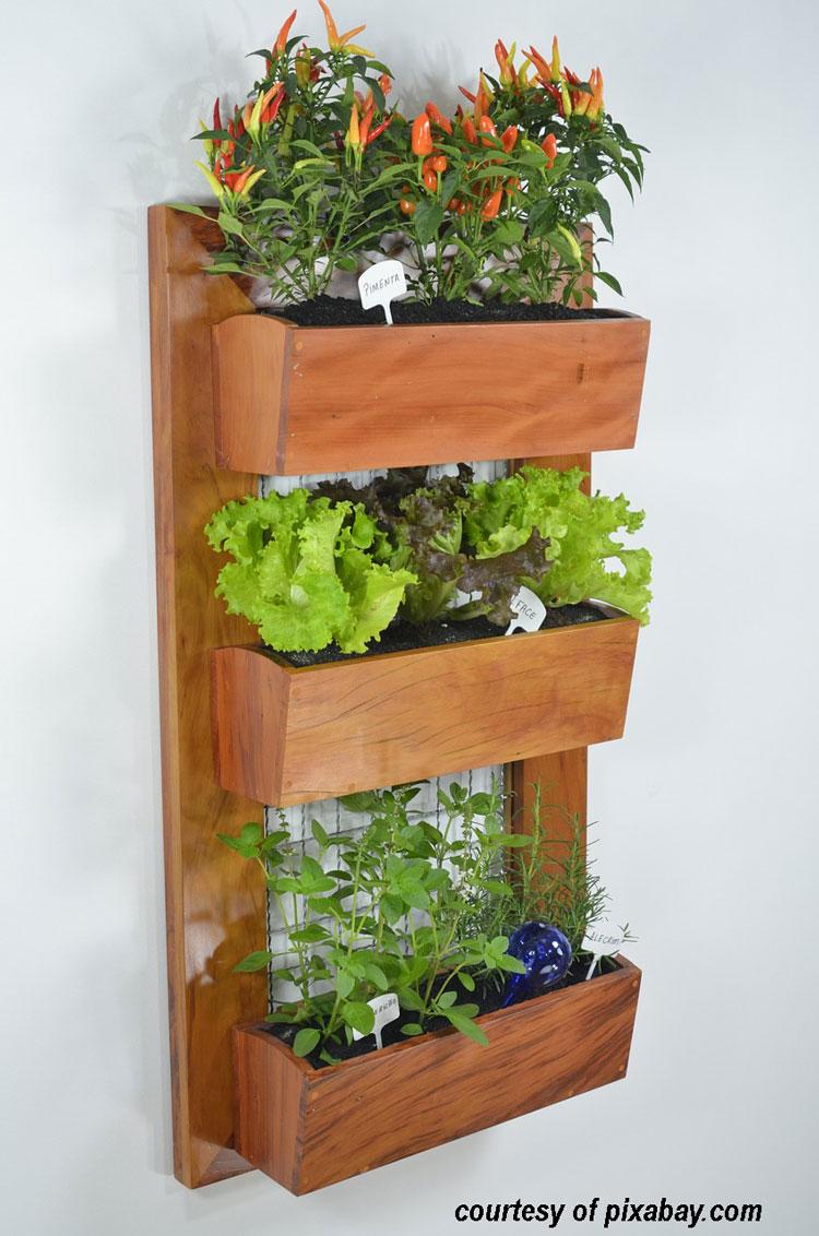 vertical vegetable garden on wall