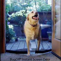 dog walking through a walk-through screen door